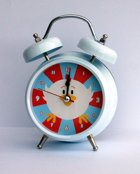 Chicken alarm clock - The English Owl Company