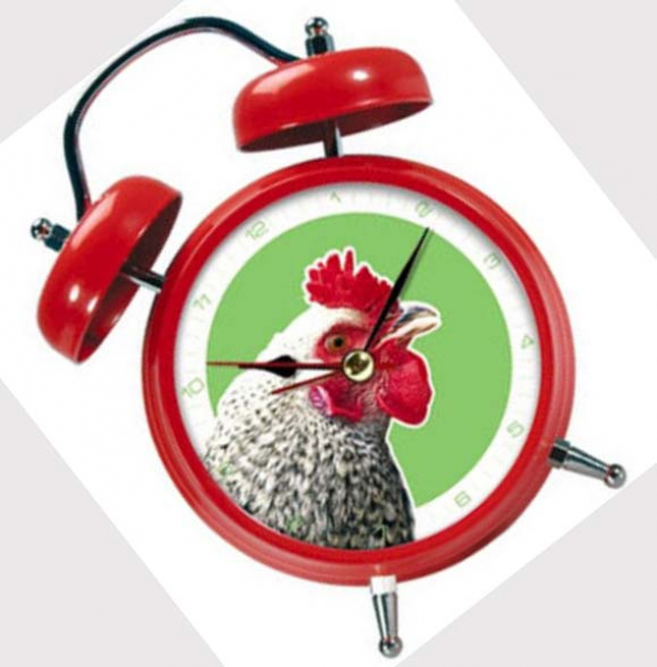 Rooster alarm clock:
