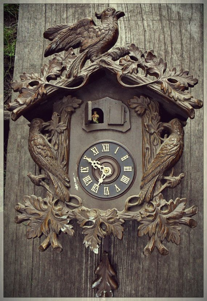 Unusual Large Black Forest Cuckoo Clock Vintage by AberrantAffixments ...