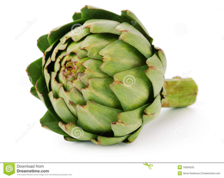 Artichoke Royalty Free Stock Photo - Image: 18394525